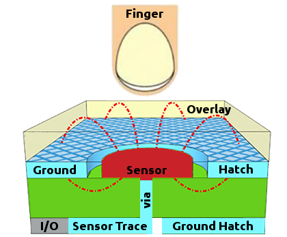 Projected Self Capacitance Sections